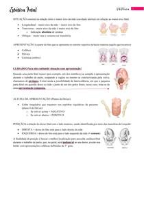 Estática Fetal - Resumo + Questões