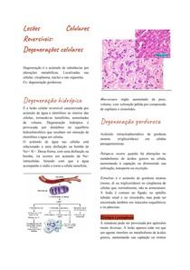 Lesões Celulares Reversíveis_ Degenerações celulares