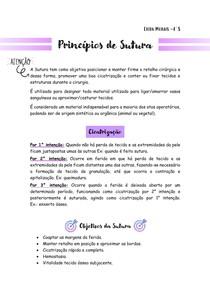Princípios de Sutura