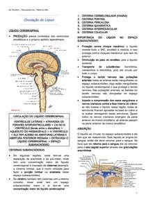 Circulação do Líquor - Neuroanatomia