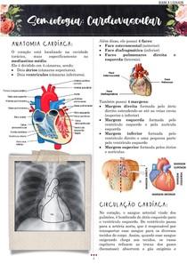 Semiologia do sistema cardiovascular completo