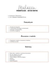 Parasitologia - Malária
