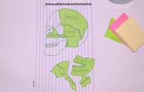 Mapa mental (ossos do crânio)