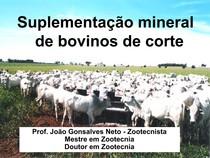 Aula 6   Suplementação mineral de bovinos de corte