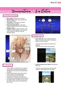 Neuroanatomia- Via óptica