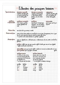 Extensões e modificações dos princípios básicos