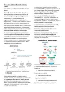Sistema Renina Angiotensina (SRAA)