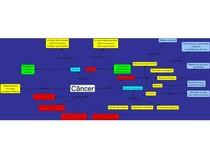 Mapa conceitual sobre câncer