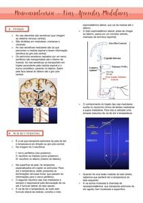 Neuroanatomia- Vias aferentes medulares