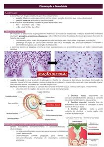 Placentação e Gemelidade