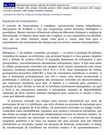 BASES DA PATOLOGIA EM VETERINARIA pdf_part_2