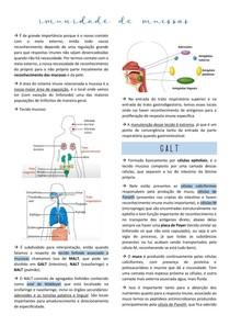 Imunidade de Mucosas