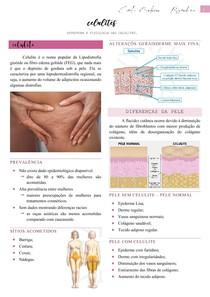 Celulites (características, classificação e tratamento) - Estética
