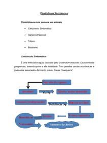 Clostridioses Necrosantes