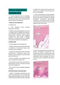 Histologia Sistema Digestório - Cavidade Oral