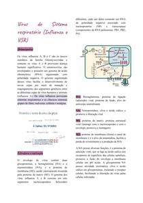 Influenza e Vírus sincicial respiratório (VSR)