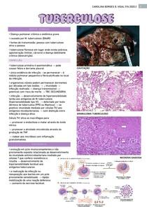 Patologia Tuberculose