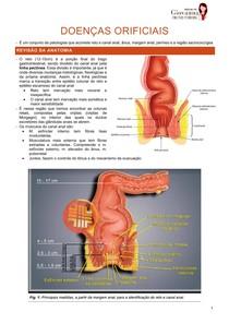 Doenças anorretais e orificias - hemorroida, fístula, abcesso, fissura anal