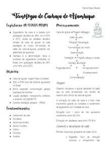 RESUMO CACHAÇA DE ALAMBIQUE