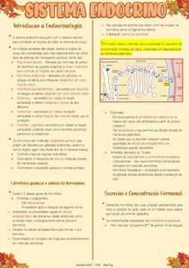 Sistema Endócrino - Fisiologia II
