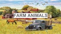 Reading (Farm Animals)