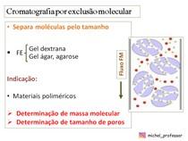 Cromatografia por exclusão molecular