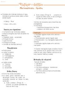 5 Macronutrientes - Lipídios