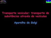 Transporte vesicular