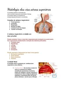 Histo - Vias aéreas superiores