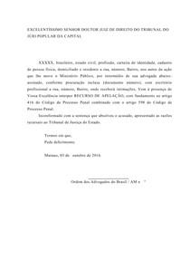 Recurso De Apelação Assistente Da Acusação Direito Processua