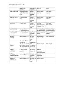 Tabela Inervação Facial
