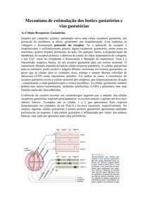 Mecanismo de estimulação dos botões gustatórios e vias gustatórias