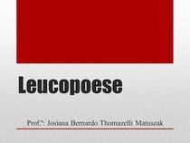 Aula - Leucopoese