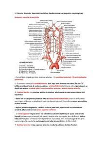4. Acidente Vascular Encefálico