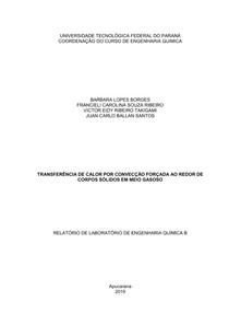 TRANSFERÊNCIA DE CALOR POR CONVECÇÃO FORÇADA AO REDOR DE CORPOS SÓLIDOS EM MEIO GASOSO
