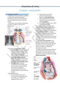 Anatomia do tórax - Pericárdio e coração