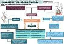 Mapa Conceitual - Síntese de Proteínas