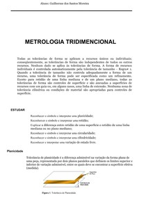 METROGIA TRIDIMENCIONAL