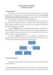 Tutela Cautelar Roteiro Modelo E Caso Ncpc Civil E Proce