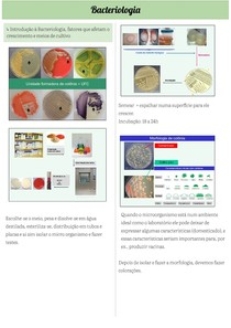 Bacteriologia (Microbiologia Veterinária Básica)