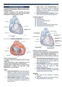 ANATO 04 - Vascularização do coração