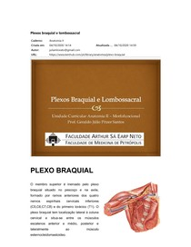 Plexo braquial e lombossacral