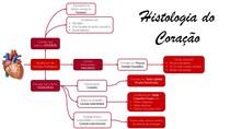 Histologia do Coração - Mapa mental