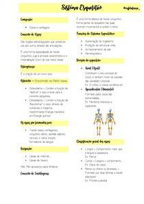 resumo digitado sistema esqueletico - Parte 1