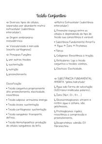 tecido conjuntivo simplificado