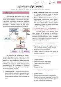 Lesão celular - Patologia