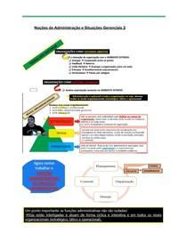 Noções de Administração e Situações Gerenciais 2