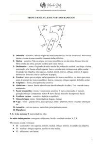 [Anatomia] Tronco encefálico e Nervos cranianos