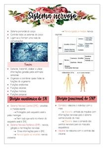 Sistema nervoso - Neurofisiologia I/II
