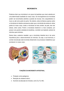Microbiota e Fibras